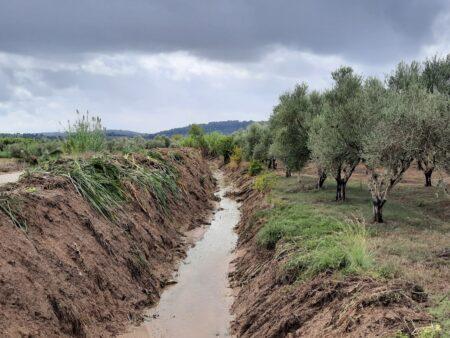 Π.Ε Ηλείας: Συνεχίζονται οι εργασίες καθαρισμού ποταμών και ρεμάτων στις πυρόπληκτες περιοχές με εντολή του Αντιπ/άρχη Βασίλη Γιαννόπουλου (photos)